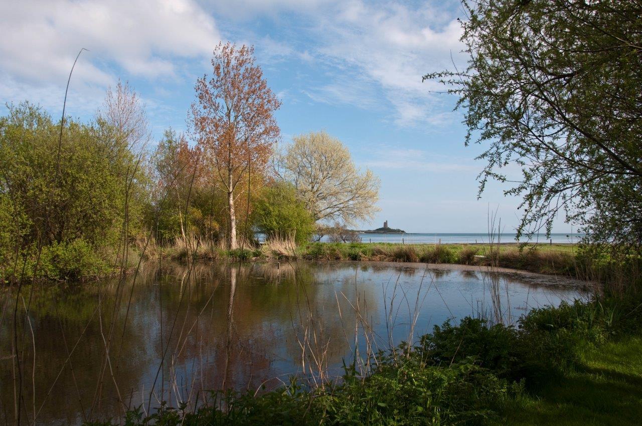 20130505-estuaire-du-vaupreux-038